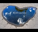 Heart Puddle no. 2