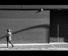 Shadow and Pedestrian