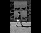 Blurred Woman with animal posters