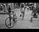 Woman With Dog on a Sidewalk